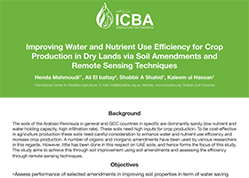 Improving Water and Nutrient Use Efficiency for Crop Production in Dry Lands via Soil Amendments and Remote Sensing Techniques