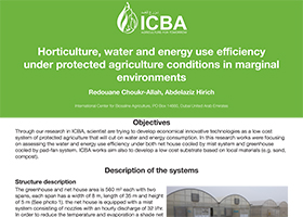 Horticulture, water and energy use efficiency under protected agriculture conditions in marginal environments