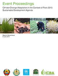 Climate Change Adaptation in the Context of Post-2015 Sustainable Development Agenda