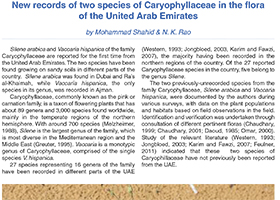 New records of two species of Caryophyllaceae in the flora of the United Arab Emirates