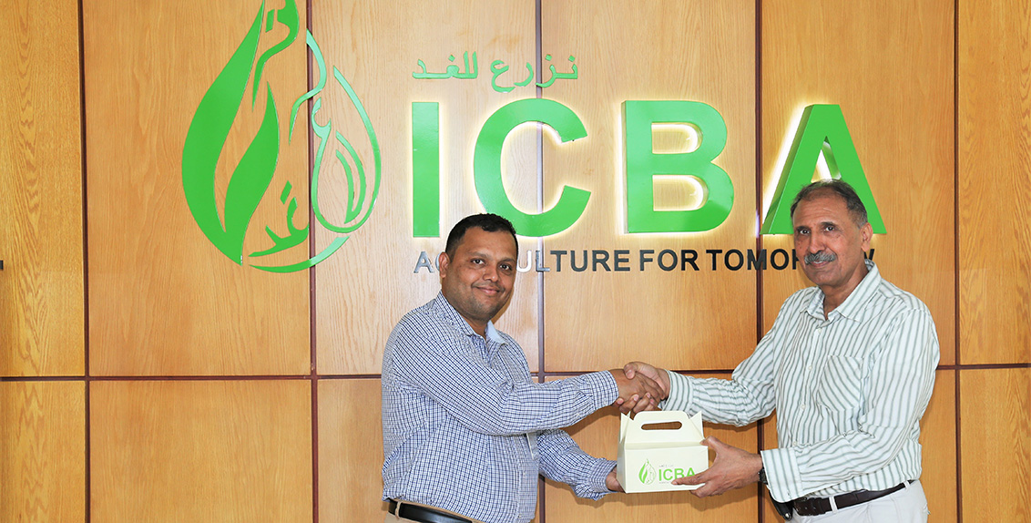 On 1 October 2018 the International Center for Biosaline Agriculture (ICBA) shared with Dubai Municipality more than 800 seeds of five threatened, indigenous wild plant species from its gene bank.