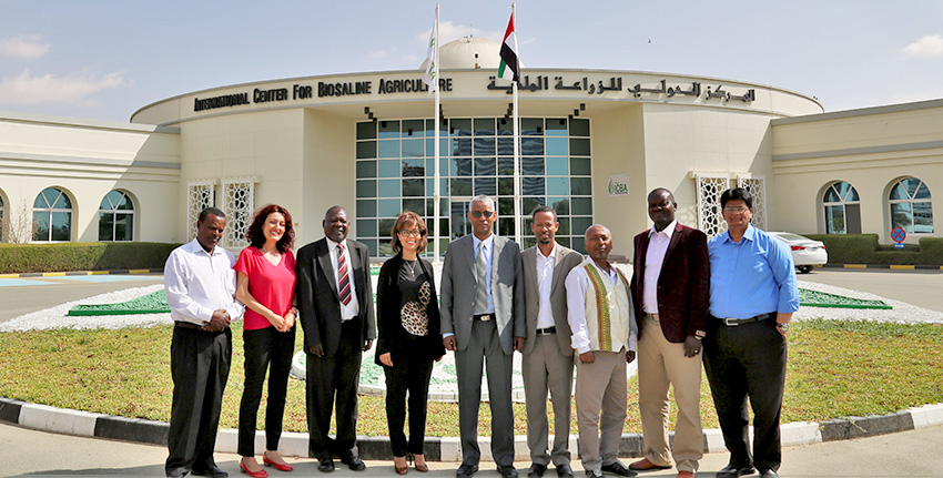 High-level delegations from Ethiopia and South Sudan led by H.E. Dr. Kaba Urgessa, State Minister for Agriculture and Natural Resources, and Dr. Victor Bennet, Director General of Research at the Ministry of Agriculture, Forestry, Cooperatives and Rural Development, respectively visited the ICBA's head office in Dubai on 26-27 February 2018 to attend the annual progress meeting.