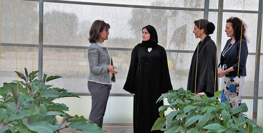 H.E. Mariam Almheiri and H.E. Sarah Al Amiri visited the net-house facility, which according to studies consumes 32 times less energy than the common model of greenhouse with a fan-pad cooling system.