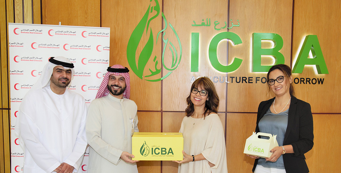 In keeping with the spirit of the Year of Zayed, the International Center for Biosaline Agriculture (ICBA) has donated more than 500 kg of dates to the Emirates Red Crescent.