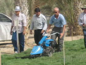 Farmers' Day at Madinat Zayed