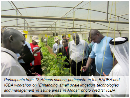 Opportunities to learn about small scale irrigation technologies and management in saline areas