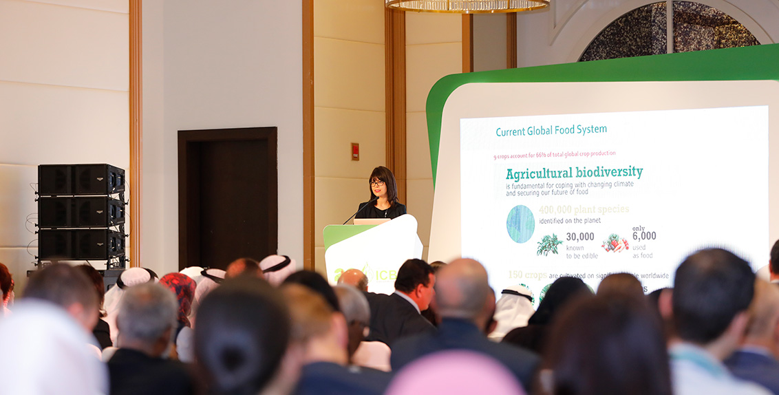 "Speaking at the forum, which also coincided with ICBA's 20th anniversary celebration, Dr. Ismahane Elouafi, Director General of ICBA, said: ""I am delighted to see the representation from more than 70 countries discussing innovations for marginal environments. It is a great sign and shows our seriousness about the issues that need to be addressed in marginal environments of the world."""