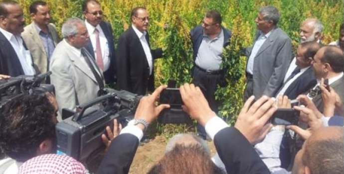Yemeni Minister of Agriculture and Irrigation visit ICBA-AREA research project in Yemen