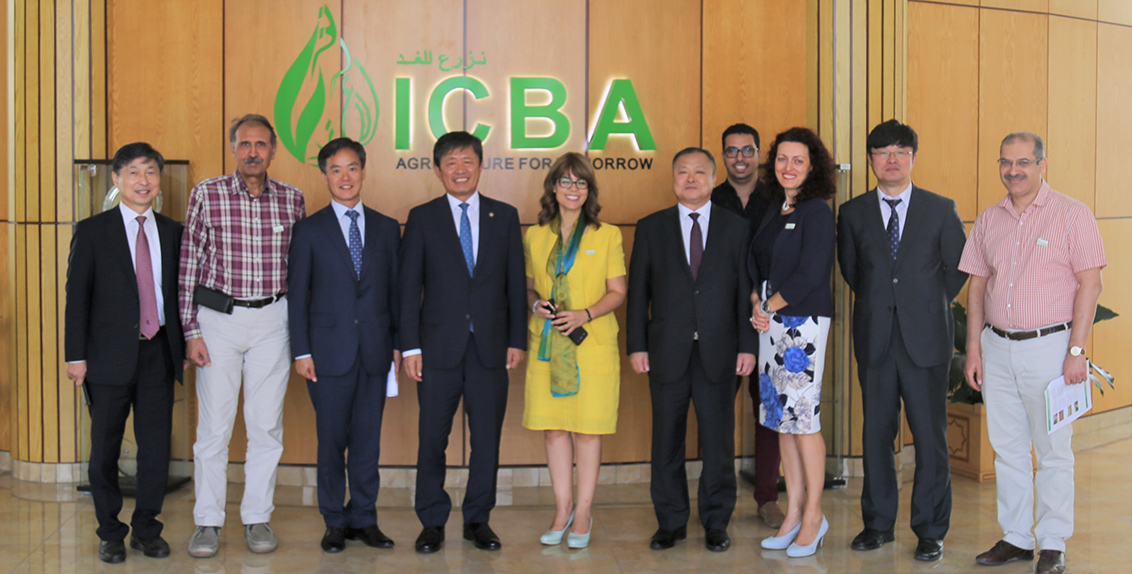 ICBA and RDA will collaborate on improving food security in the two countries by adopting innovative technologies such as advanced sensor technologies, net-houses and vertical farming, as well as finding genes responsible for salt tolerance in plants with a particular focus on drought and salinity resilience of rice. Both organizations will also explore areas of possible joint research in line with the UAE needs, specifically in salinity, agricultural production and food security.