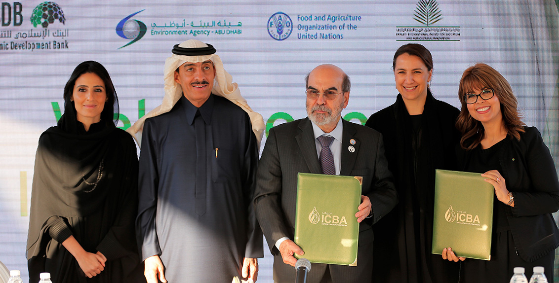 The parties signed the second agreement to collaborate in biosaline agriculture, water scarcity, and climate change adaptation, among other things, during an open day at the ICBA head office in Dubai.