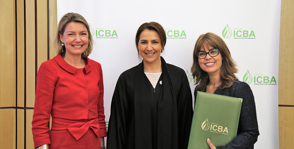 Building on nearly 15 years of strategic collaboration, ICBA and IFAD signed a memorandum of understanding (MoU) to this effect in the presence of Her Excellency Mariam bint Mohammed Almheiri, UAE Minister of State for Future Food Security, at ICBA's headquarters in Dubai.