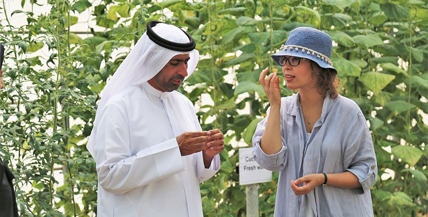 Dr. Ismahane Elouafi told H.E. Sultan Al Shamsi about ICBA's research work on an innovative net-house technology suited to hot and arid conditions. The center has been studying energy and water use efficiency of this technology under UAE conditions.