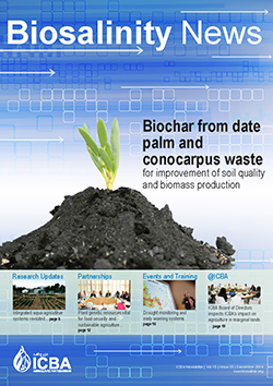 Biochar from date palm and conocarpus waste for improvement of soil quality and biomass production