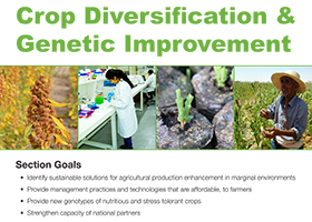 Crop Diversification & Genetic Improvement Section