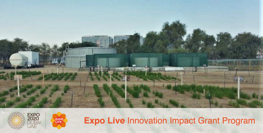 Inland and coastal modular farms for climate change adaptation in desert environments