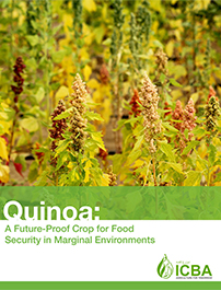 Quinoa: A Future-Proof Crop for Food Security in Marginal Environments