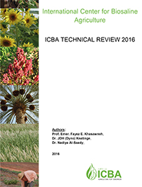ICBA Technical Review 2016