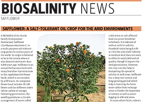 Safflower: a salt-tolerant oil crop for the arid environments
