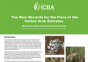 The New Records for the Flora of the United Arab Emirates