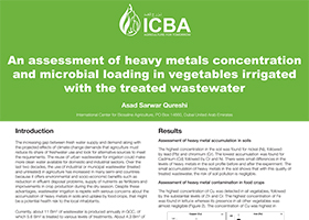 An assessment of heavy metals concentration and microbial loading in vegetables irrigated with the treated wastewater