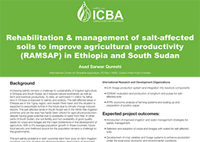 Rehabilitation & management of salt-affected soils to improve agricultural productivity (RAMSAP) in Ethiopia and South Sudan