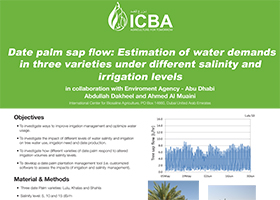 Date palm sap flow: Estimation of water demands in three varieties under different salinity and irrigation levels