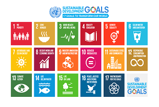 Achieving the SDGs through Investments in Marginal Environments