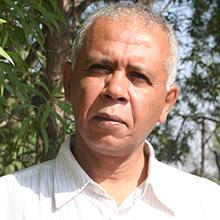 الدكتور عبد الله الشنقيطي