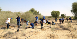 Moreover, the museum hosted several tree-planting events throughout the year, which were also linked with the Year of Tolerance in the UAE and in which more than 600 trees such as Ghaf, Acacia, Ziziphus (Sidr), and Moringa were planted.