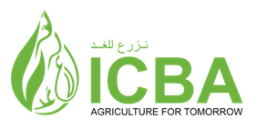 ICBA reveals a new brand reflecting the Center's commitment to innovation, partnership and impact