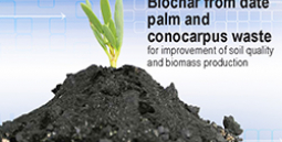 Low-cost compost production technology, beneficial uses of compost and its product fulvic acid