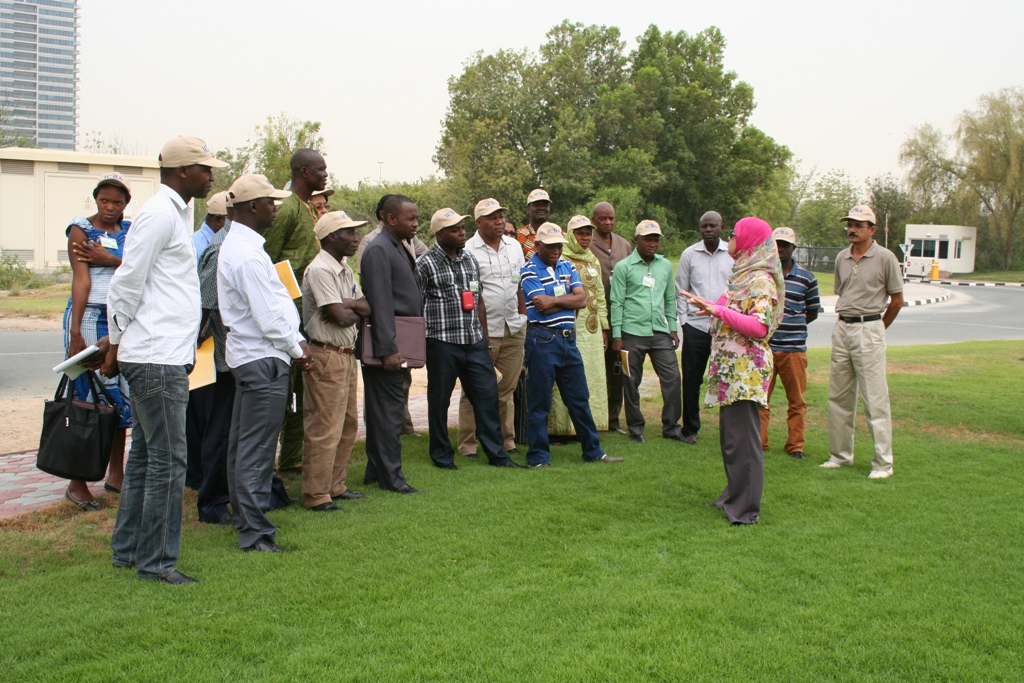Enhancing Small-Scale Irrigation Technologies and Management in Saline Areas in Africa (French-Speaking Countries)